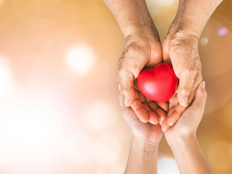 Elderly senior person or grandparents hands with red heart in support of nursing family caregiver for national hospice palliative care and family caregivers month concept