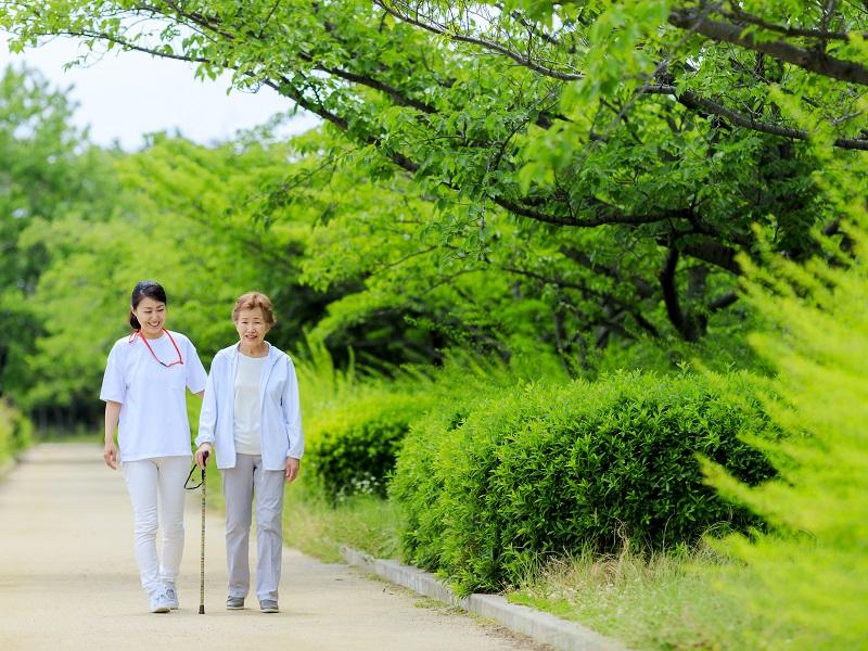 介護士が杖をつく高齢者をサポートしながら緑道を歩くイメージ