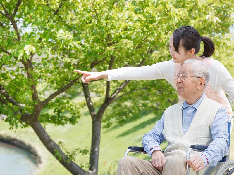 車椅子に乗った高齢者とサービス提供責任者が会話をしながら散歩を楽しんでいるイメージ