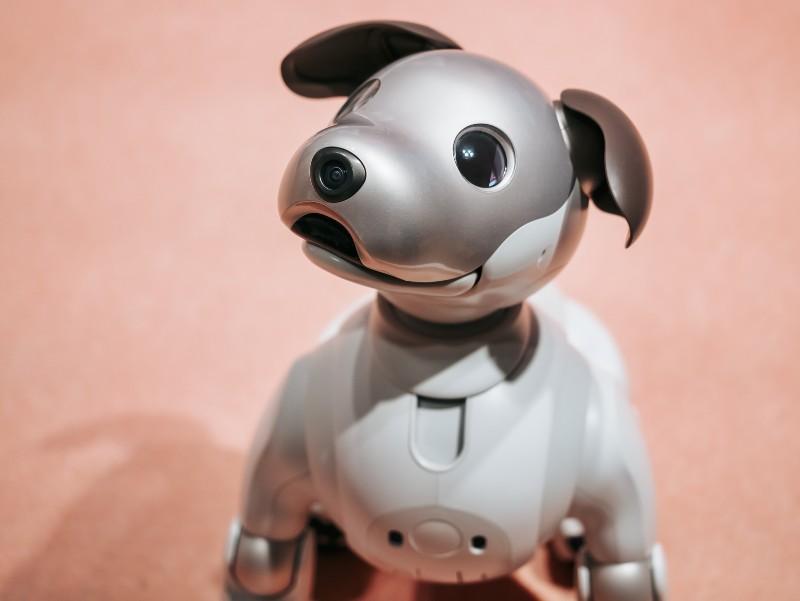 ロボット会話イメージ